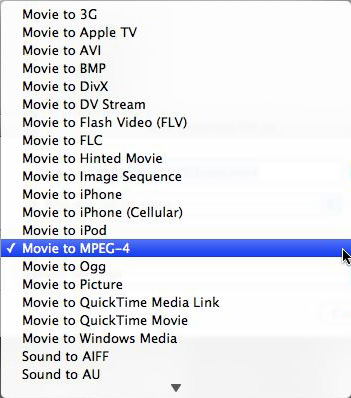 Screenshot of QuickTime Export Options List