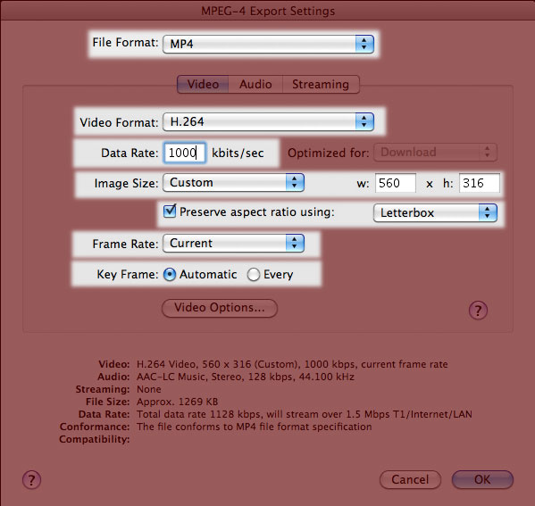 Screenshot of QuickTime MPEG-4 Video Settings