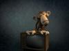 Monkey TV